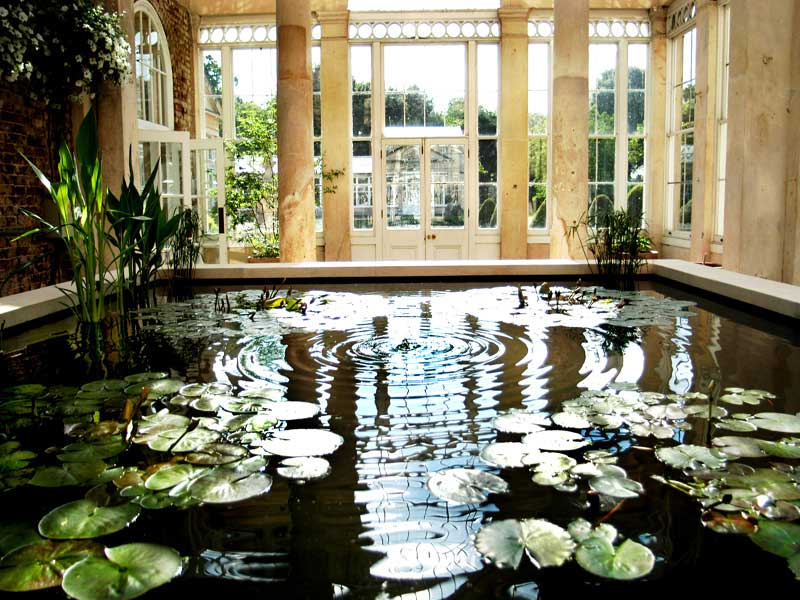 Completed conservatory pond.