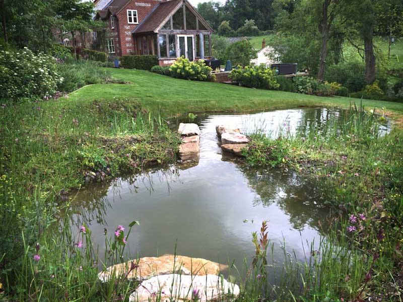 stream-pond-2.jpg