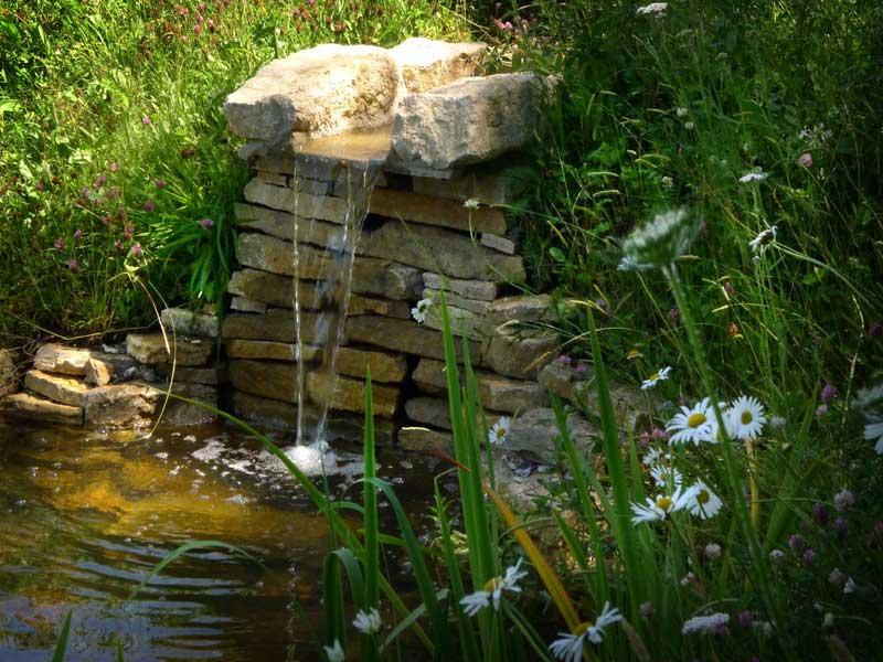 stream-pond-3.jpg
