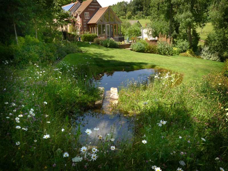 stream-pond-5.jpg