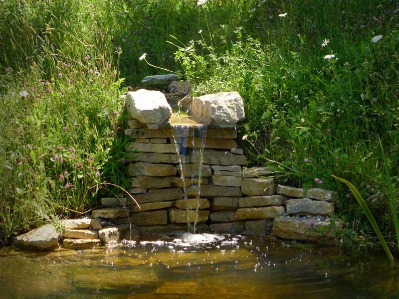 stream-pond-6.jpg
