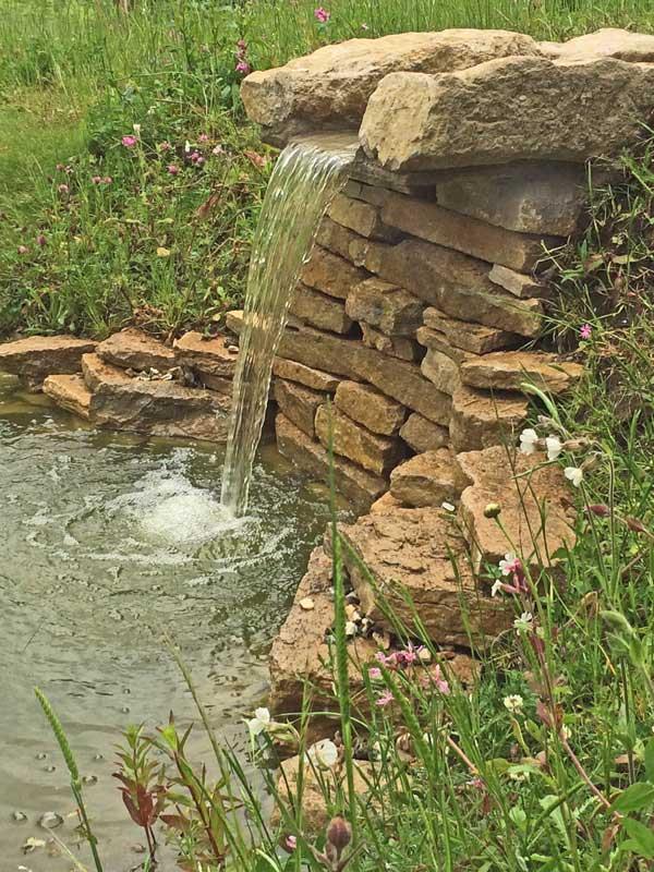 stream-pond-7.jpg