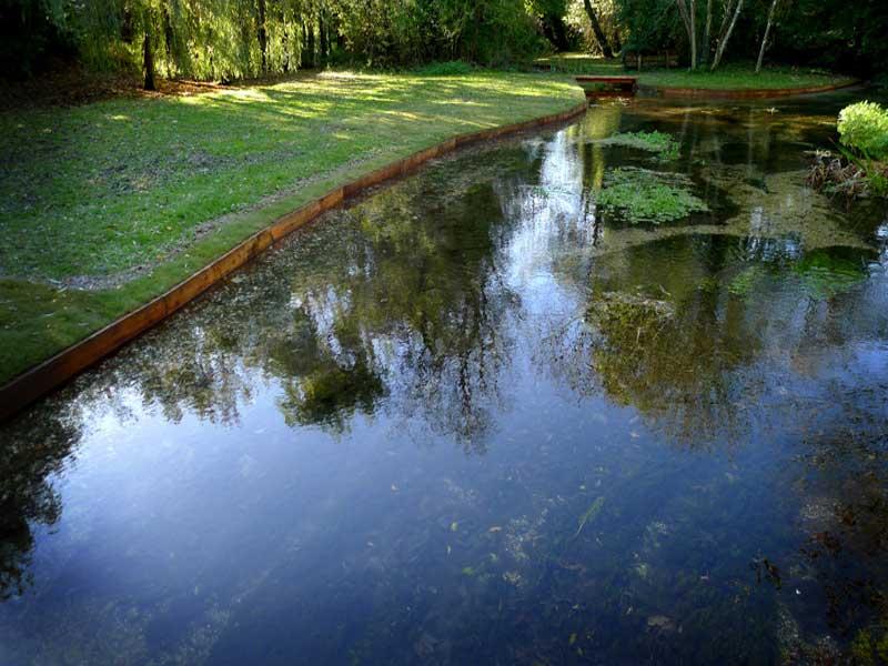 riverbank-restoration-2a.jpg