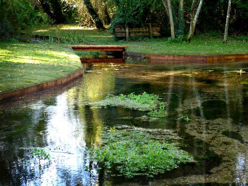 riverbank-restoration-3a.jpg