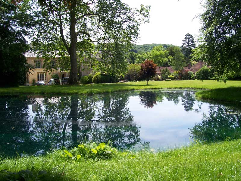Newly built pond, Hampshire.