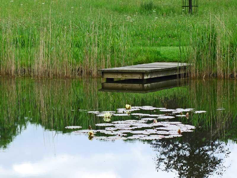 dorset-pond-1a.jpg
