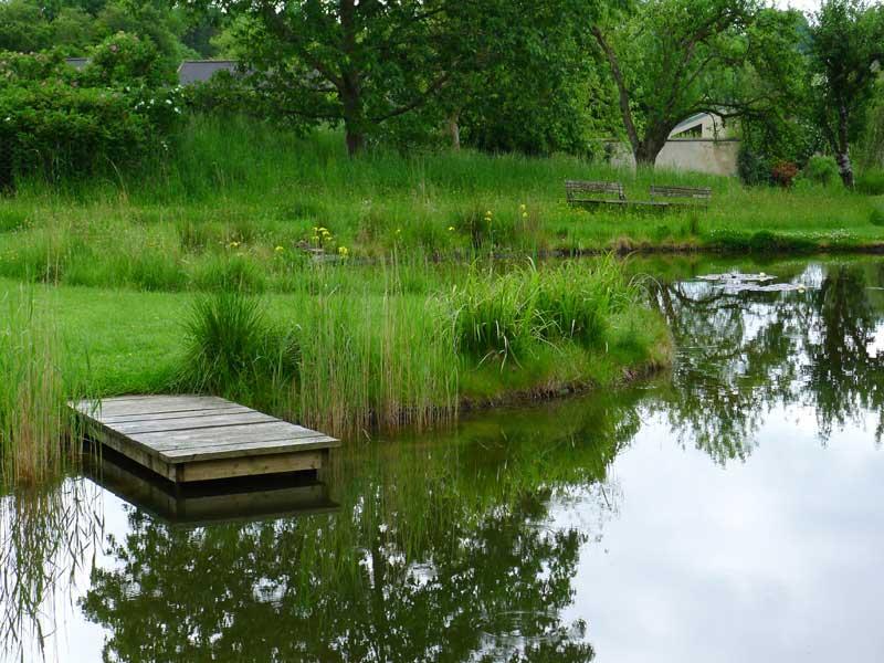 dorset-pond-3a.jpg