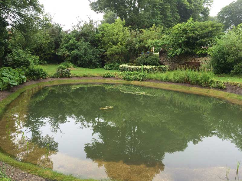 pond-building-hampshire-5.jpg