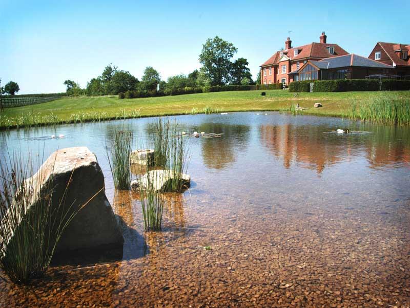 natural-pond-andover-6.jpg