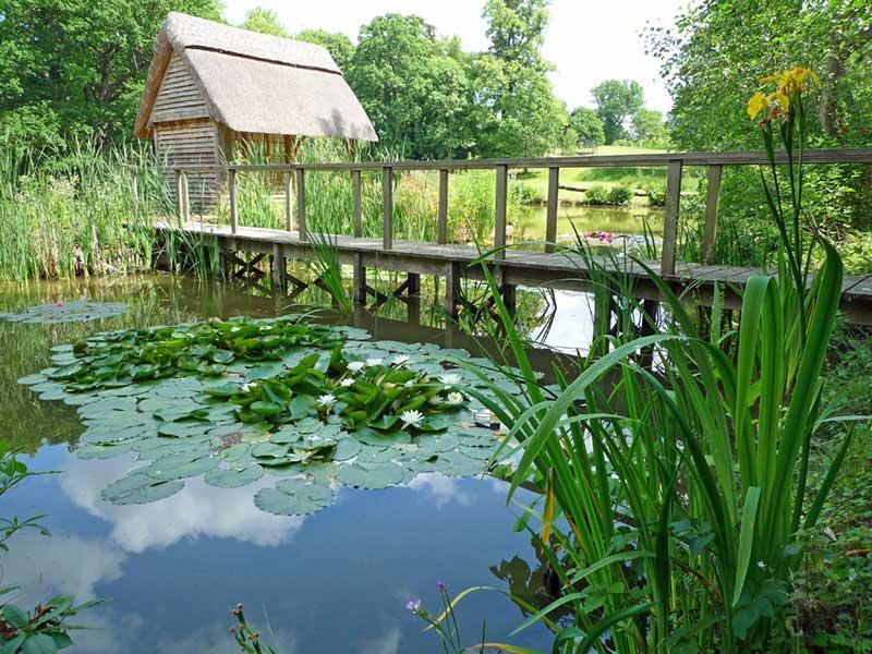 berkshire-lake-restoration-8.jpg