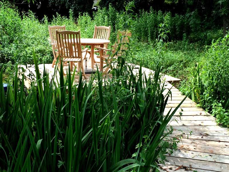 Pond decking and pond restoration, Dorset.