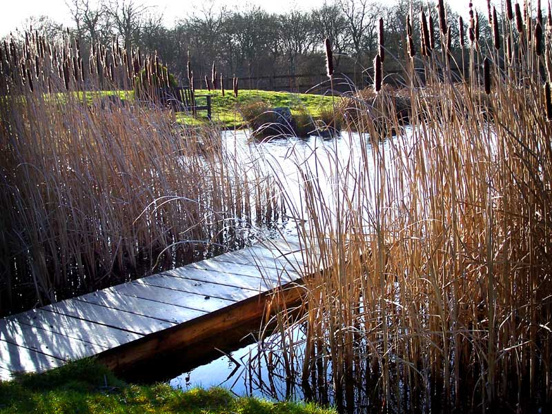 Natural pond construction, Andover, Hampshire