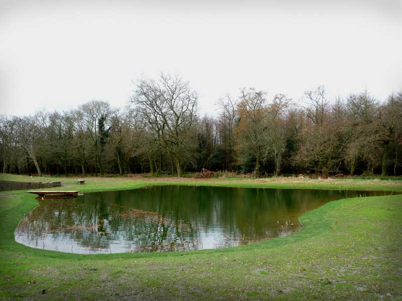 Natural pond construction, Wiltshire