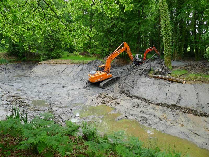 Large pond restoration, Dorset