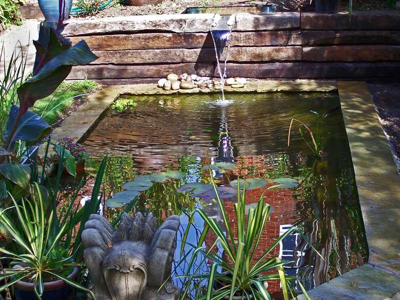 Small garden pond, Winchester.
