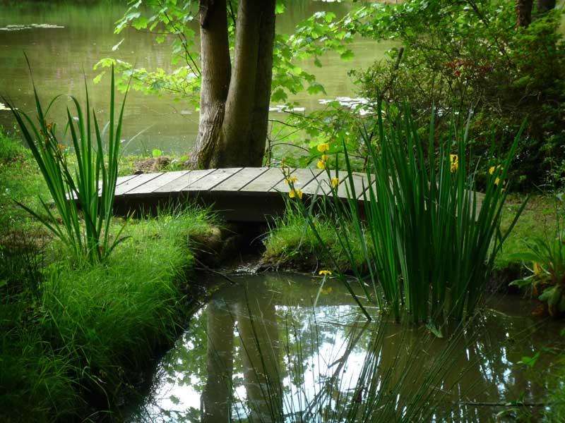 Stream restoration, Hungerford, Berkshire