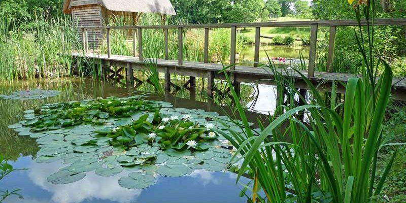 berkshire-lake-restoration-8