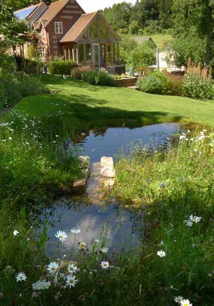 stream-pond-5